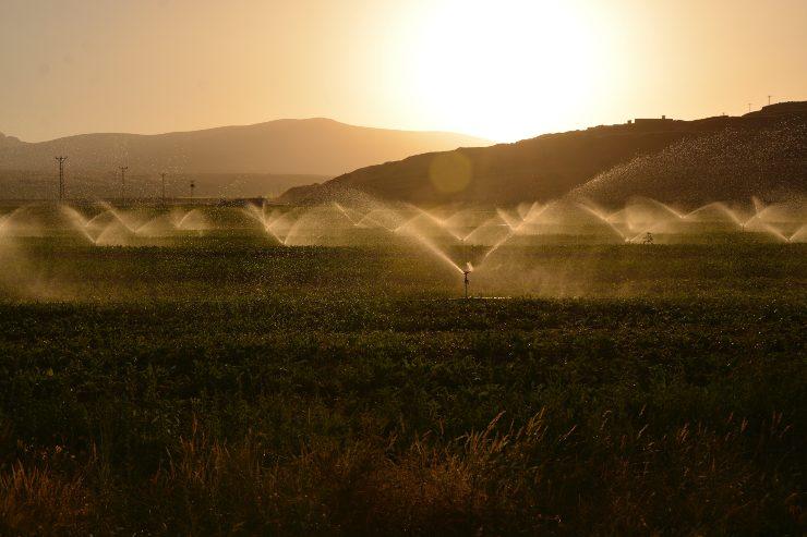 Acceso a agua potable