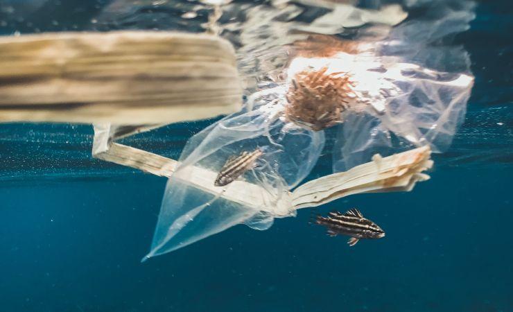 Plásticos en mares y océanos España