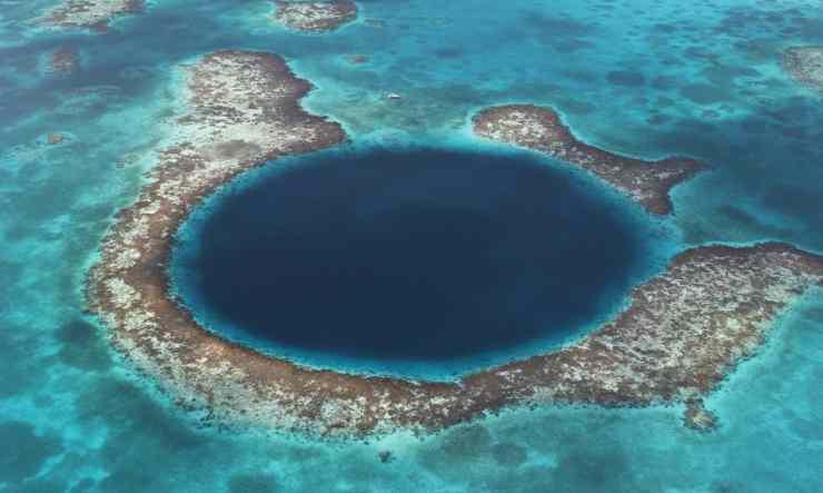 arrecifes y corales en peligro