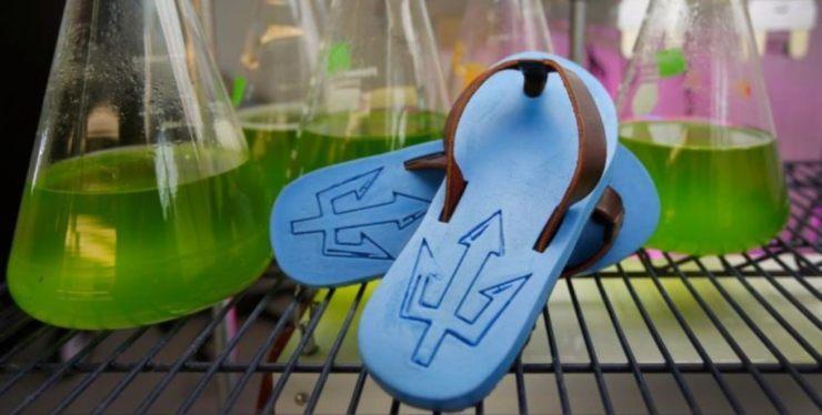 Sandalias biodegradables