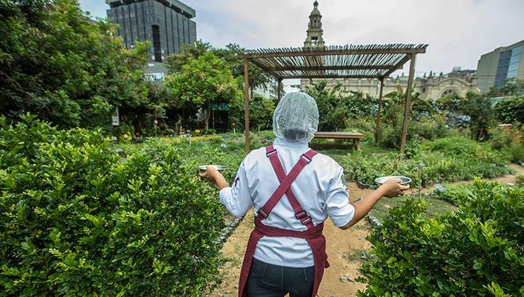 La huerta de Astrid y Gastón es un respiro verde en el corazón de lima (Foto de astridygaston.com).