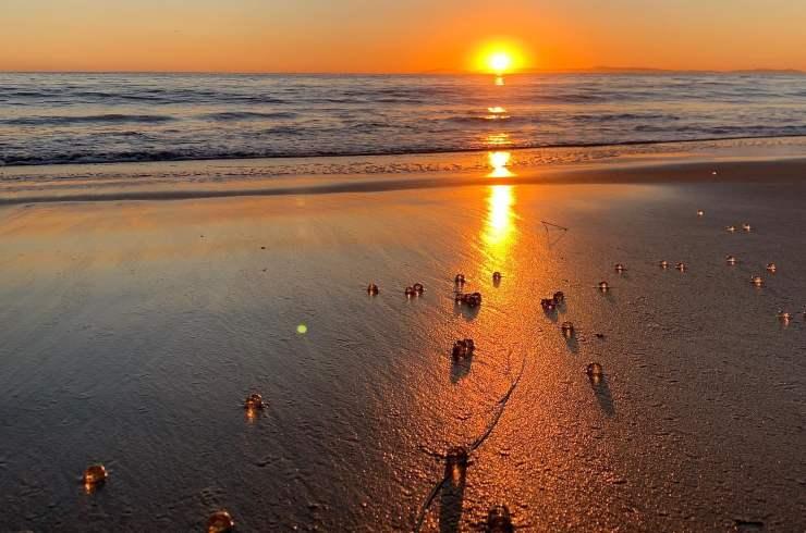 esferas transparentes costa de California