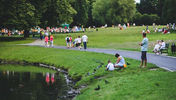El acceso es espacios verdes es elemental para una ciudad sana y segura (Foto de Kaboompics - Pexels).