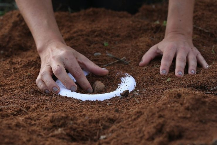 urna biodegradable
