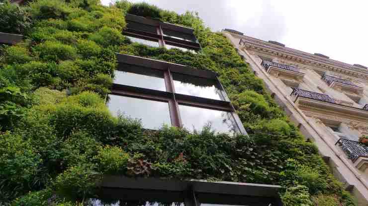 casas sin impacto ambiental
