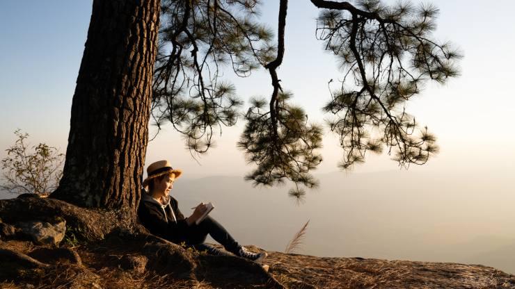 enseñanzas de la naturaleza para aplicar en nuestra vida diaria