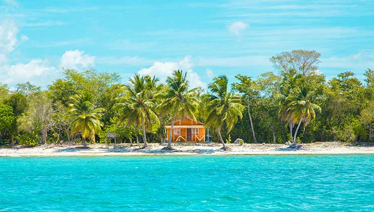 El Caribe es una reserva de biodiversidad clave para la humanidad (Foto de Leonardo Rossatti - Pexels).