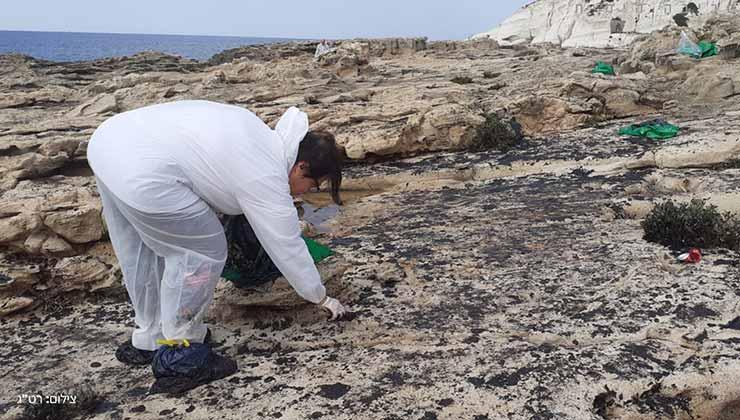 La limpieza de las playas se realiza con cientos de voluntarios (Foto EcoOcean).