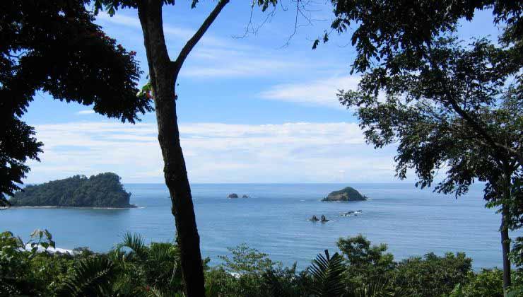 Disfruta de selva y playa en el Parque Nacional Manuel Antonio (Foto de Visit Costa Rica).