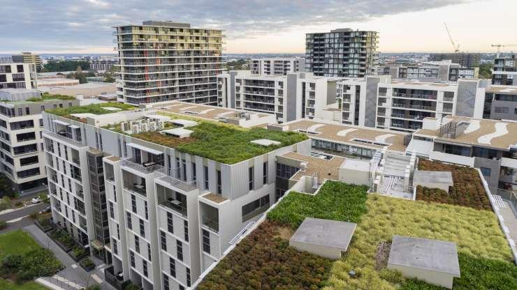 Los beneficios de los techos verdes