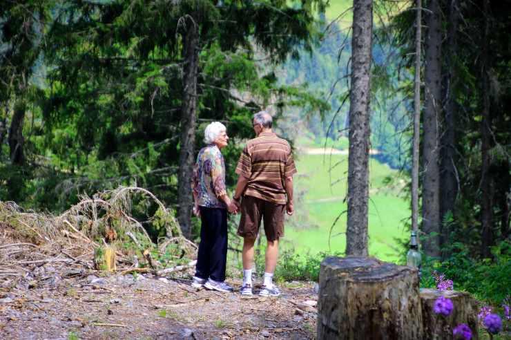 Adultos mayores bosque