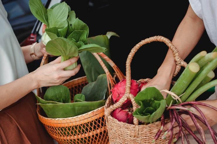 Elección de vegetales