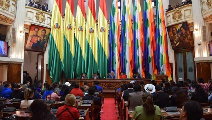 Freidenberg destaca la constitución del congreso de Bolivia como ejemplo de paridad de género (Foto de senado.gov.bo).