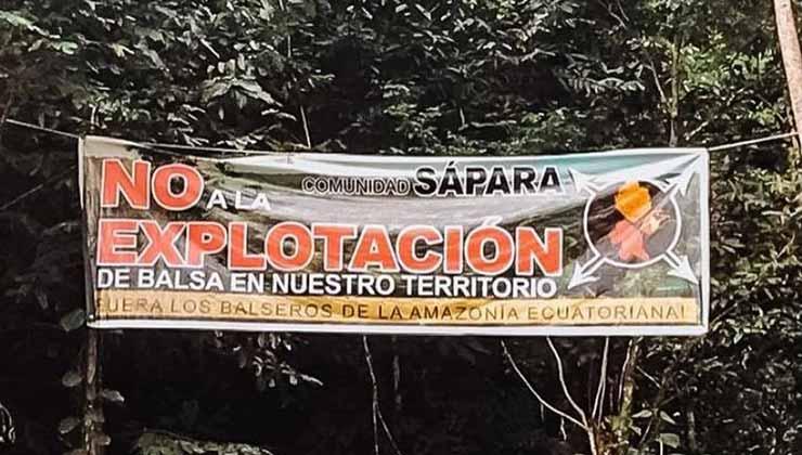 El pueblo Sápara rechaza la extracción de madera balsa de la selva (Foto de Fundación Pachamama).