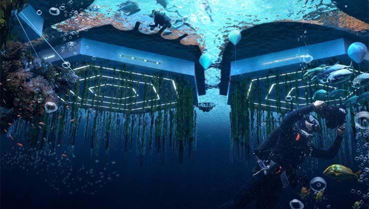 Los hexágonos de las ciudades estarían anclados al fondo del mar, donde además se producirían alimentos (Foto de Oceanix City).
