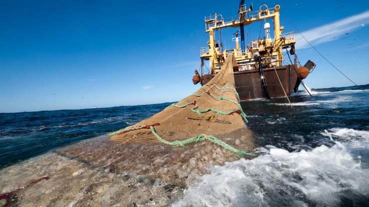 Costa Rica vetó la ley de pesca der arrastre