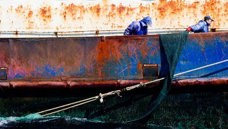 Un embarcación de pesca ilegal levando sus redes de arrastre (Foto Greenpeace).