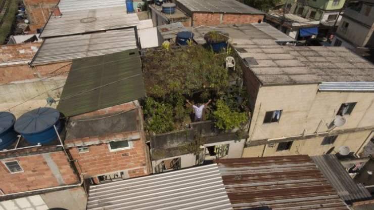 Techo Verde Favela