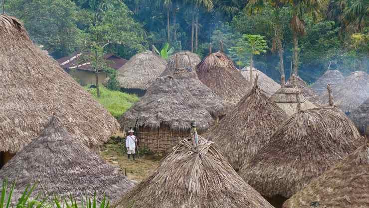 Empresas estadounidenses que degradan la Amazonia