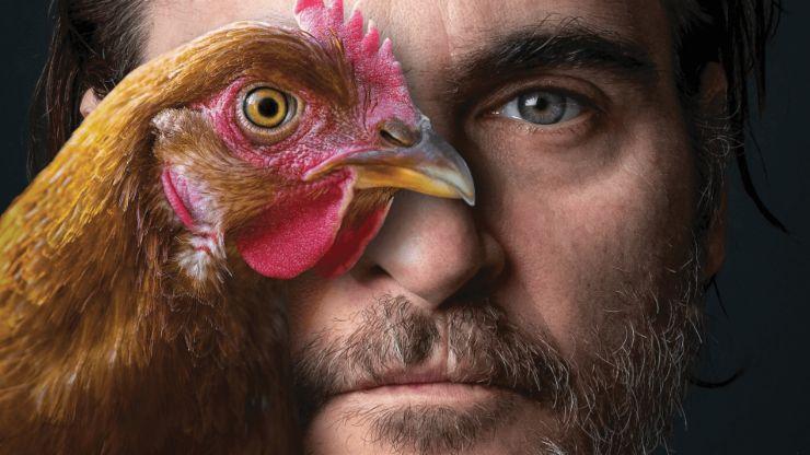 5 veganos famosos que luchan por los derechos de los animales