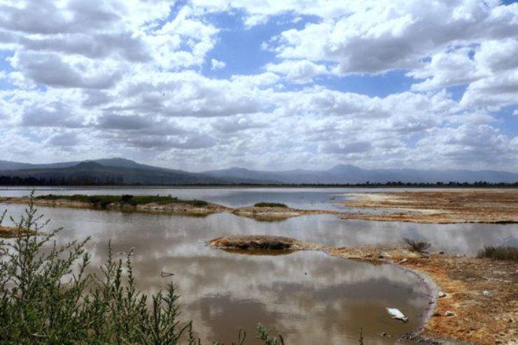 El lago Cuitzeo está acorralado por la contaminación