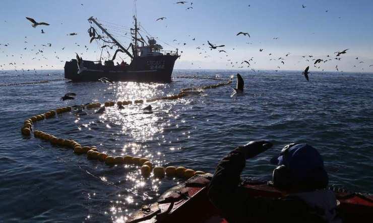 ley de merluza en Chile