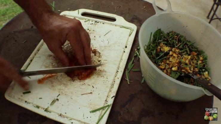 qué compostar y qué no