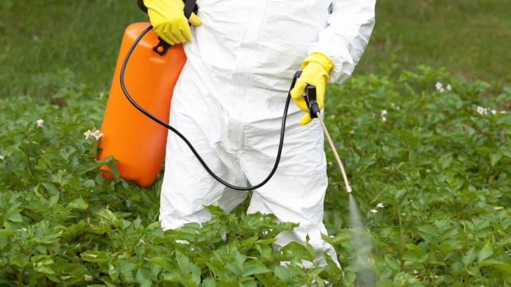 ¡Peligro, glifosato!: qué debes saber del herbicida presente en lo que comes