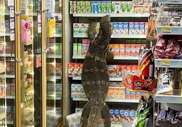 Un lagarto gigante en un supermercado de Tailandia