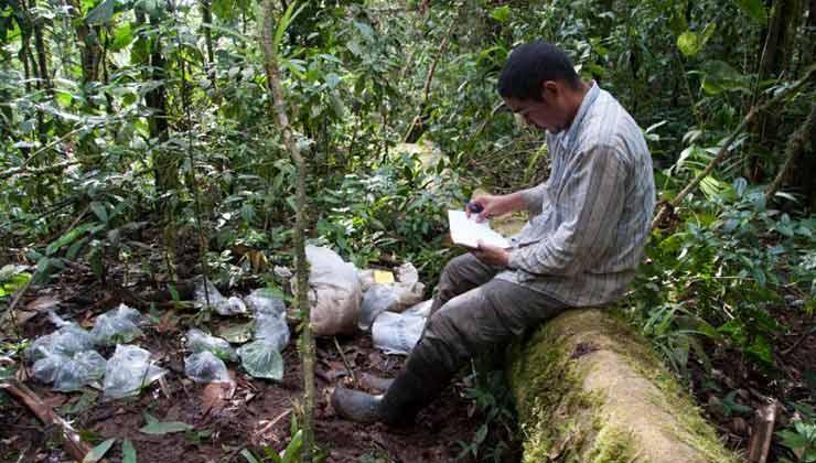 Agentes del Servicio Nacional de Fronteras de Panamá fueron claves para el nuevo hallazgo (Foto Gobierno de Panamá).