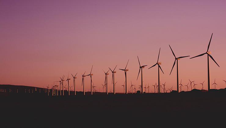 Los parques eólicos generaron mucho malestar en la vida de las personas en Alemania (Foto de Narcisa Aciko - Pexels).