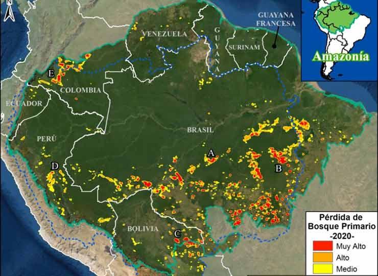 El informe elaborado por el MAAP marca las áreas donde se da la deforestación del Amazonas (Foto: MAAP).