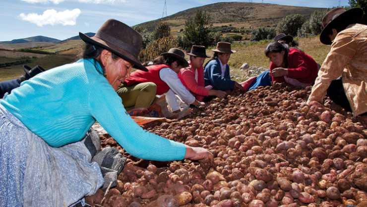 claves para entender el movimiento campesino latinoamericano