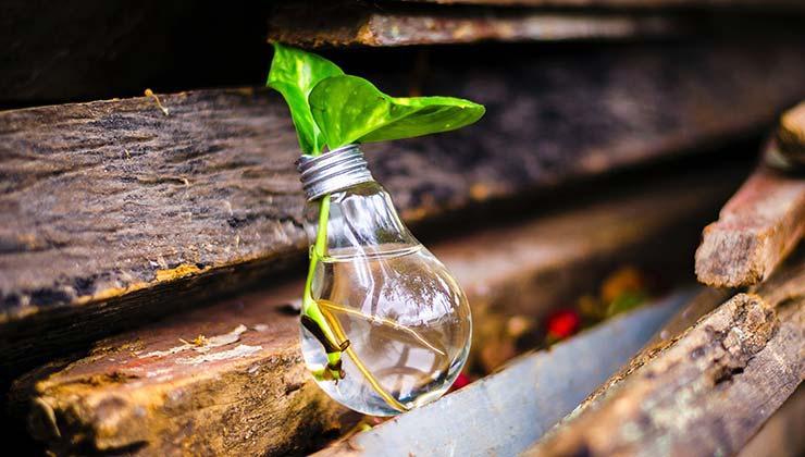 El ahorro de energía es clave para frenar el calentamiento global (Foto de Bruno Scramgnon - Pexels).