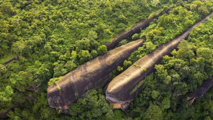 Three Whale Rock: las ballenas de piedra que nadan en una tupida selva