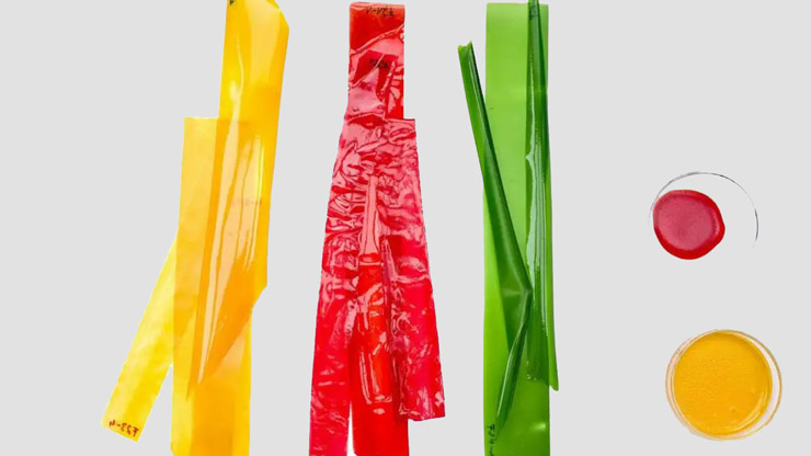 Green Alley Award a una alternativa biodegradable al plástico de un solo uso