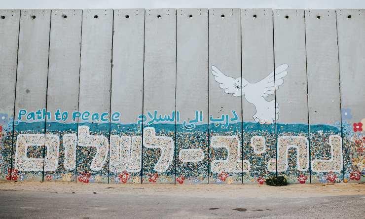 dia de la convivencia por la paz