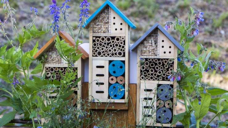 hotel de insectos para tu jardín
