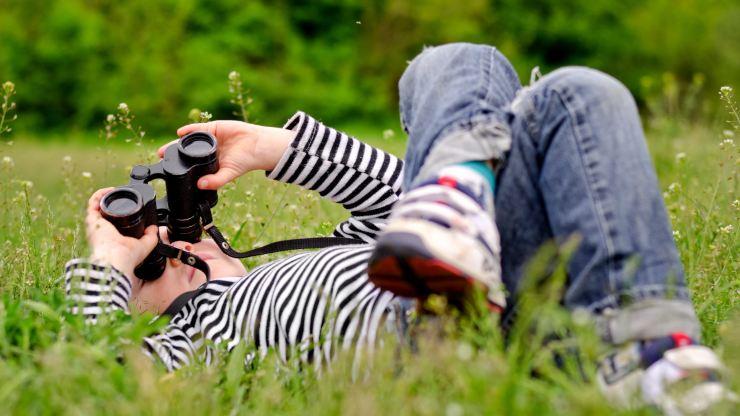 Observación de aves: un antídoto para desconectar del mundo digital