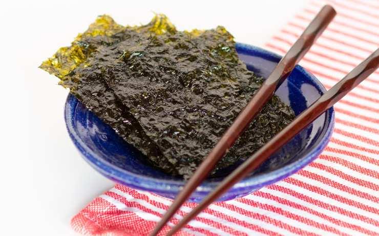 las algas marinas podrian reemplazar carne de pescado