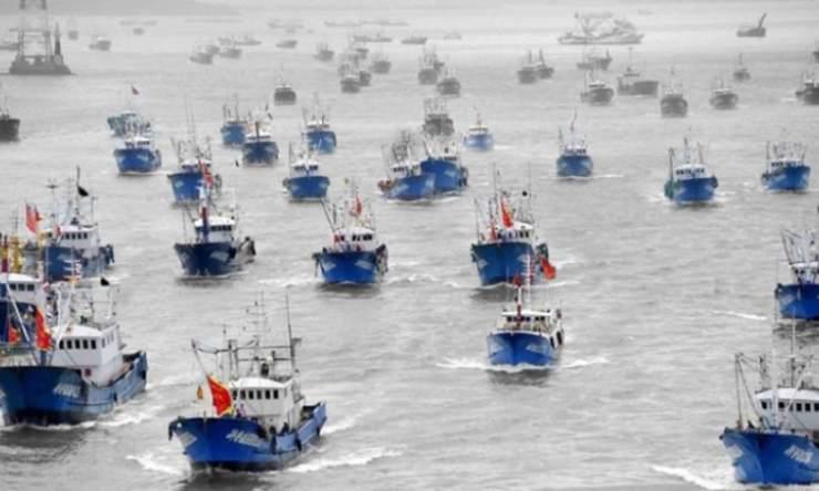 dia mundial de la pesca ilegal