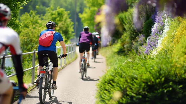 Día Mundial de la Bicicleta: dos ruedas para descubrir y cuidar el mundo