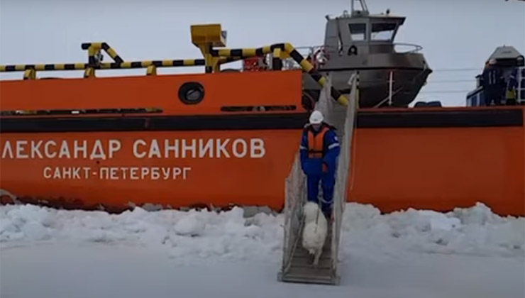 Ayka fue rescatado y llevado junto a sus dueños que se encontraban en un pueblo a 10 kilómetros de distancia (Foto: captura de pantalla).